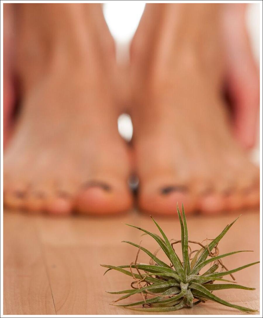 yoga toes blog