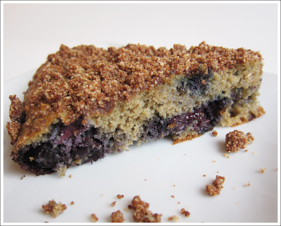 blueberry almond flour paleo cake blog (2)