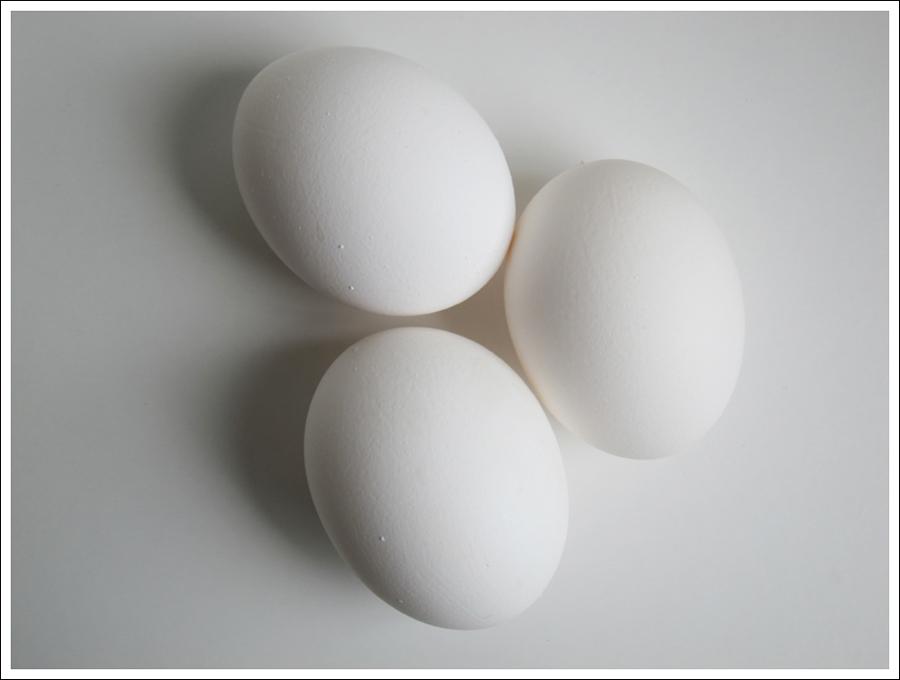 making an easter egg tree blog (2)