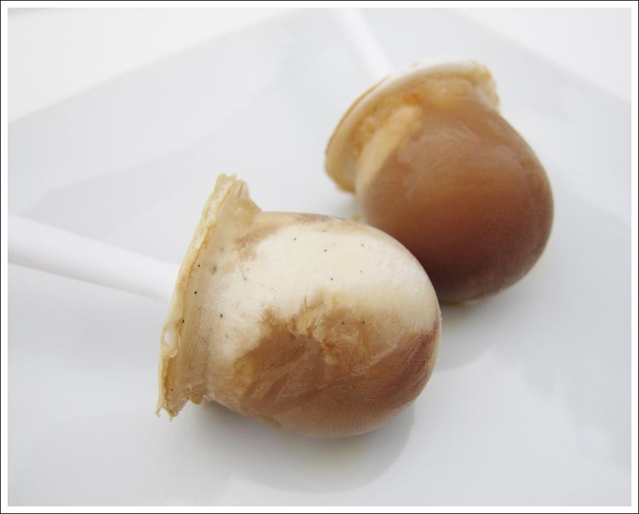 vanilla coffee popsicles blog (2)