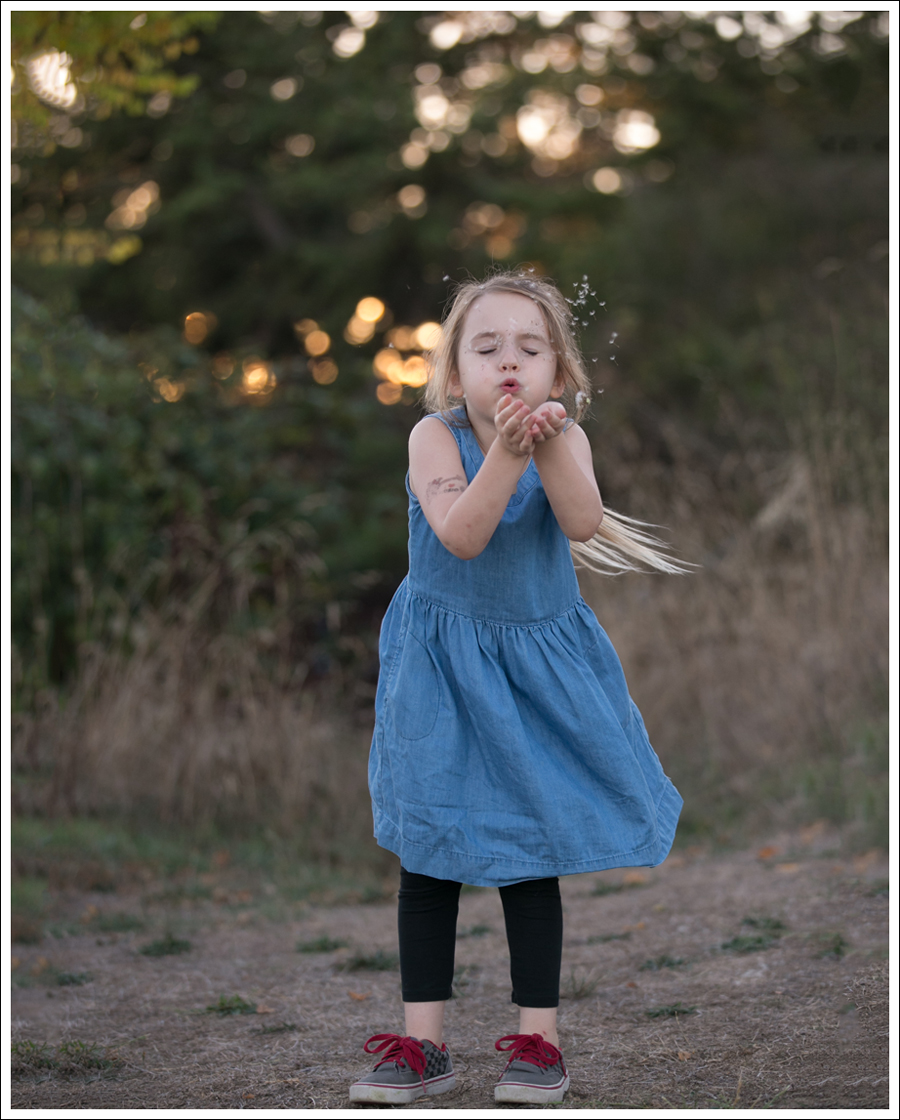 blog-gapkids-chambray-dress-gray-checkered-vans-2